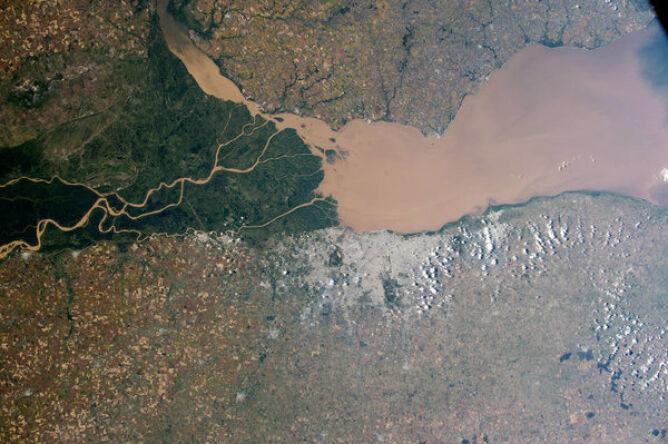 Delta i bagna rzeki Parana w Argentynie