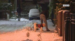 W nocy z wtorku na środę sypnęło śniegiem